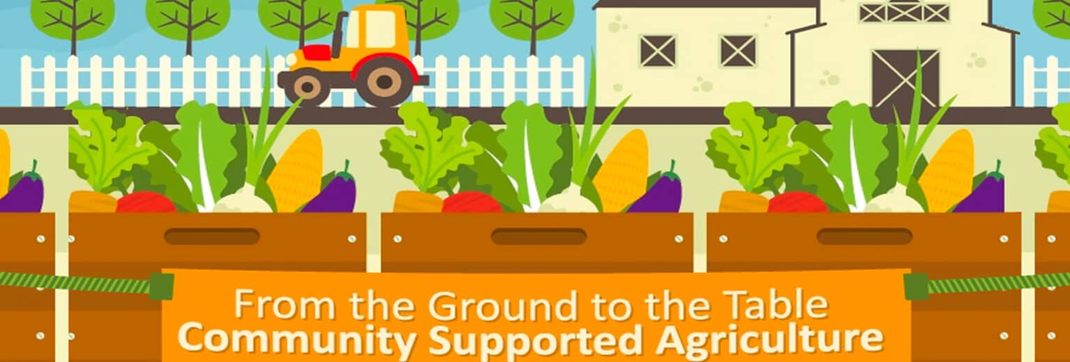 Community Supported Agriculture Boxes